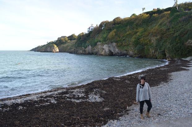 Balscadden Bay.JPG