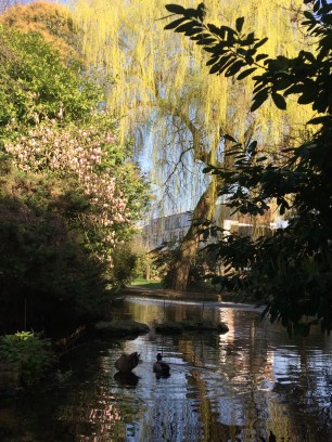 New-river-walk