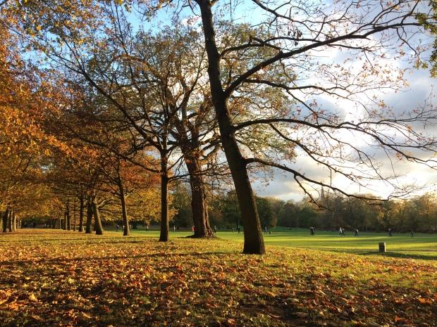 greenwich-park.JPG